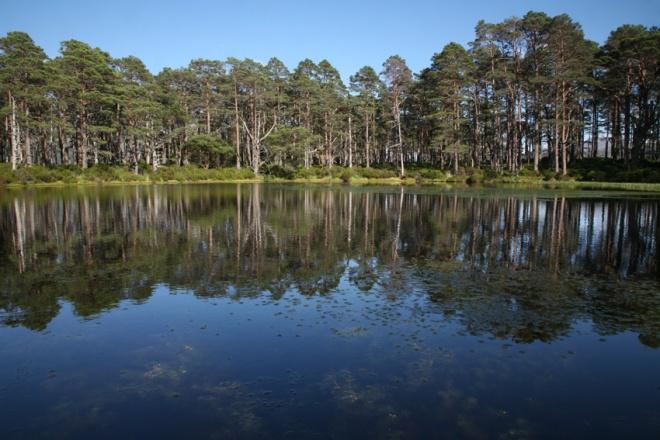 Deep round pond on Eilean Dubh na Sroine